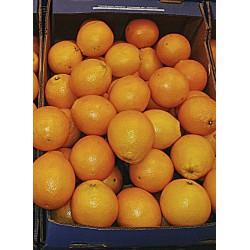 Naranja Navel (Kg)
