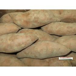 Batata (Kg)